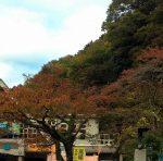 プチ登山スポット高尾山! 気軽に紅葉を楽しめる癒しスポット