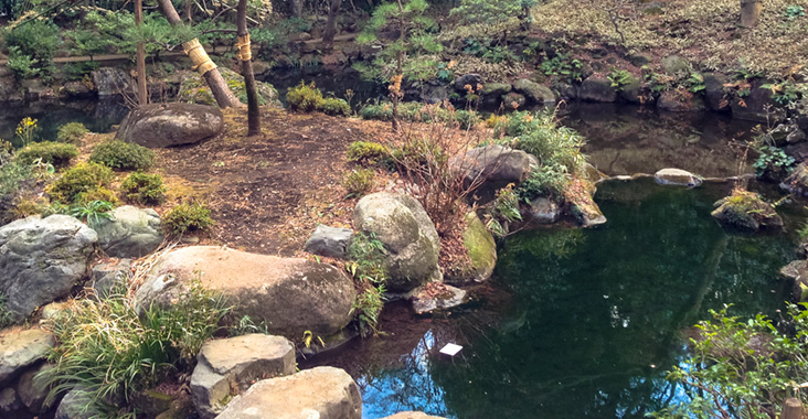 殿ヶ谷戸庭園の次郎弁天池
