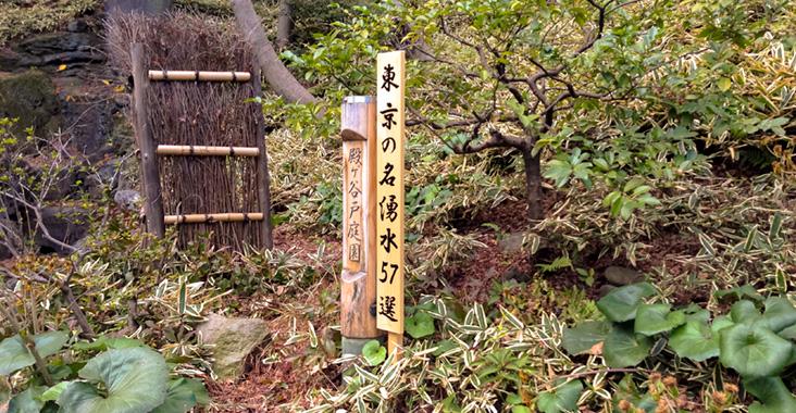 殿ヶ谷戸庭園の湧水