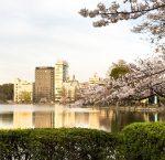 動物園や美術館もあるよ! 上野恩賜公園でのんびりと
