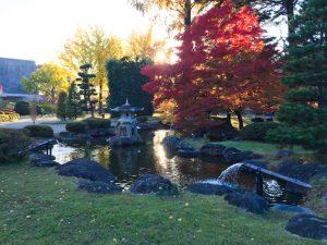 紅葉が囲む池