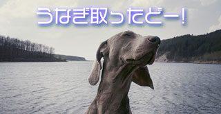 西郷どん第23話「寺田屋騒動」自分を貫いた有馬と薩摩藩の悲しい同士討ち