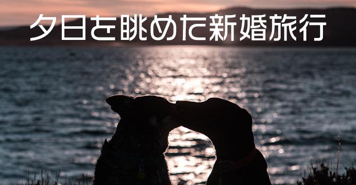 夕日を眺めた新婚旅行