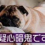 西郷どん第26話「西郷、京へ」ヒー様疑心暗鬼で病んじゃったよオイ